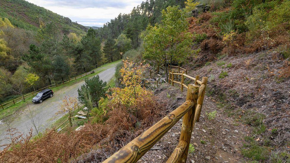 Un arroyo junto al camino en Vesarredonda