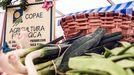 Productos de agricultura ecológica con el sello del Copae