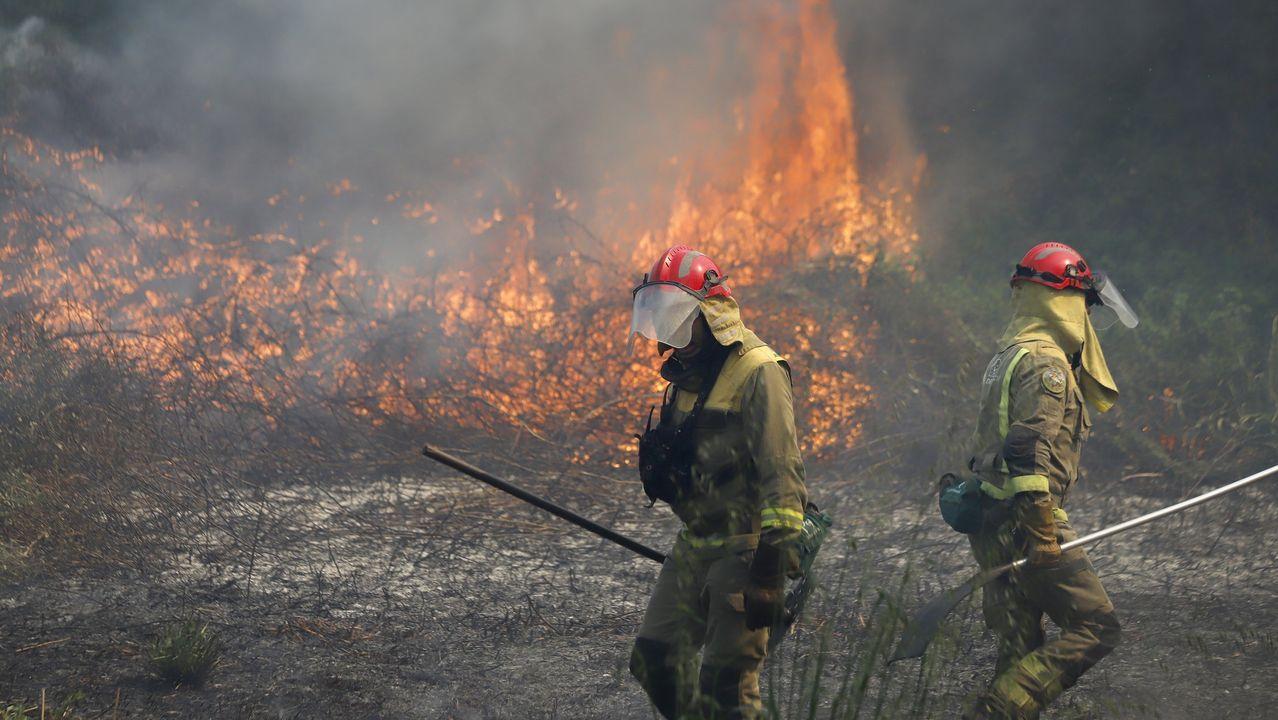 Un hidroavión recoge agua de la presa de La Pinilla para combatir el incendio declarado en la zona de Mirasierra, en Segovia