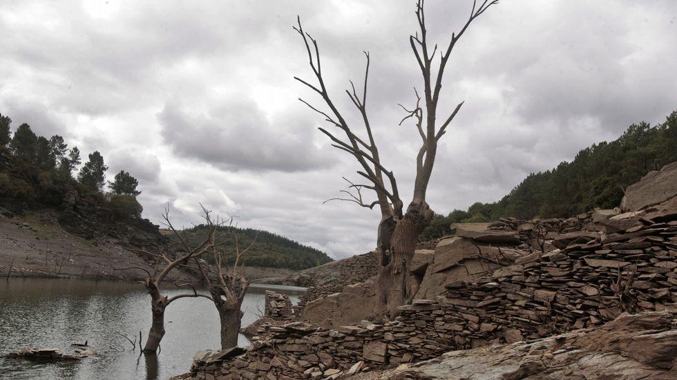 Árboles secos y muros de piedra resisten enteros bajo el agua desde 1969, el año en el que el embalse de Vilasouto se llenó