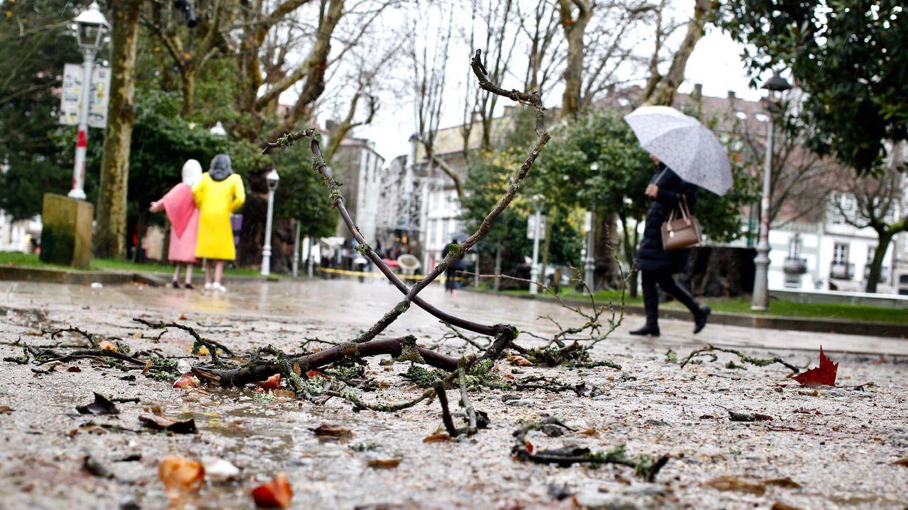 Ramas caídas en Santiago