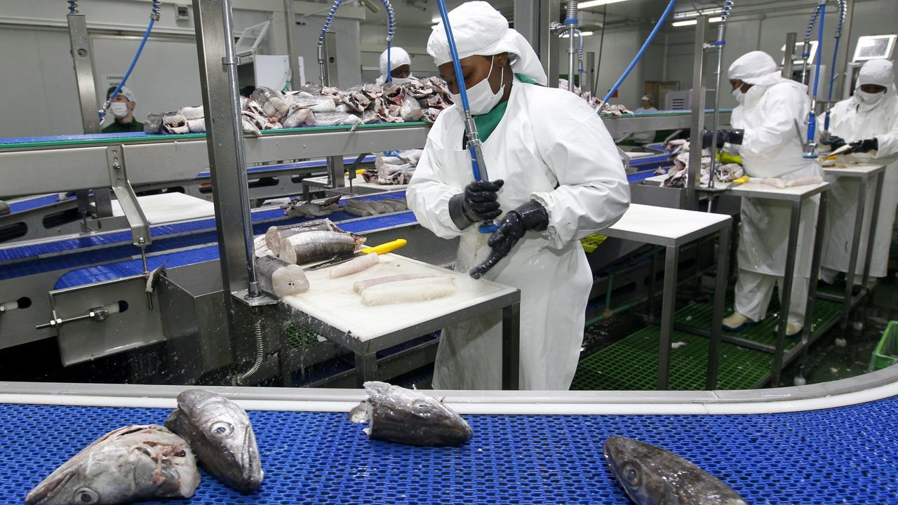 Pescados Rubén, de Foz, en imagen de archivo, lidera la facturación en A Mariña junto con ABSA (Burela) y Puerto de Celeiro (Viveiro), según el Informe Ardán 2021