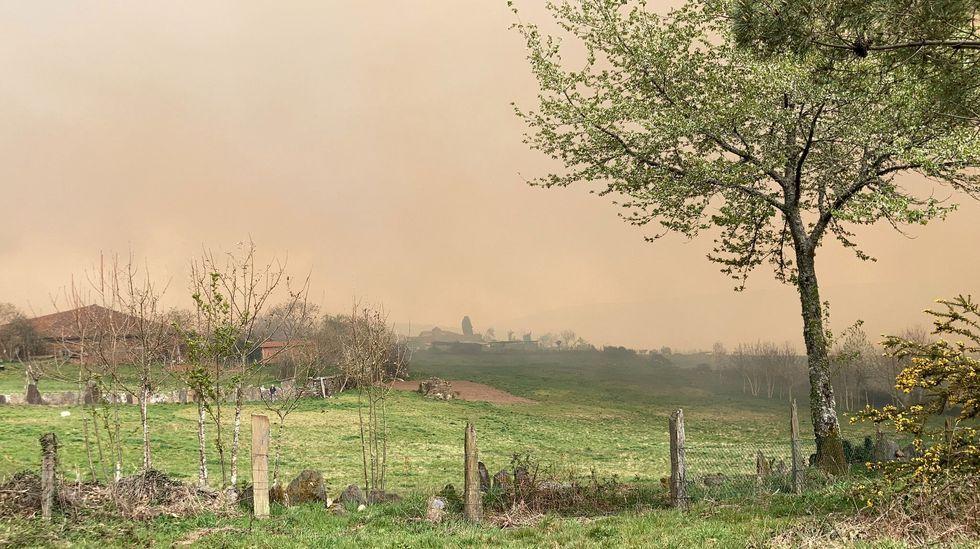 Las fotos del incendio de Marcelle, en Monforte.Incendio forestal en  el parque del Xurés, en Lobios