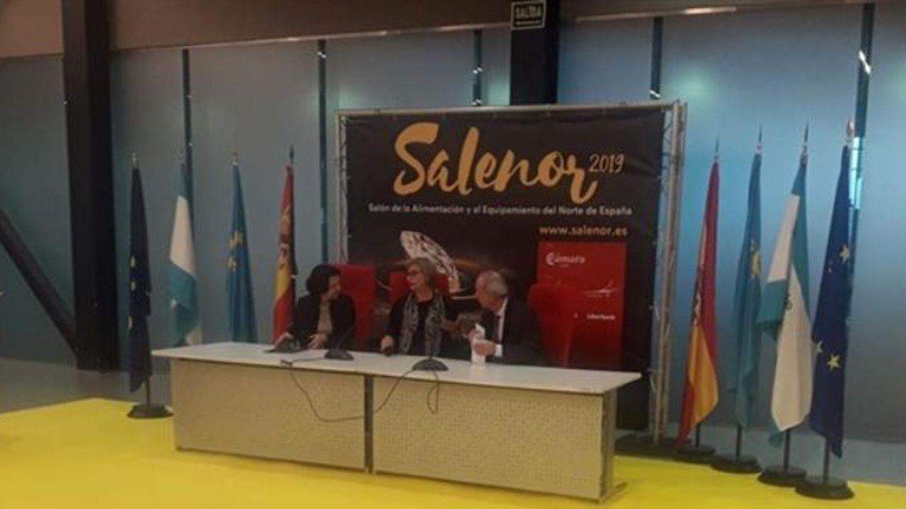 Presentación de Salenor 2019