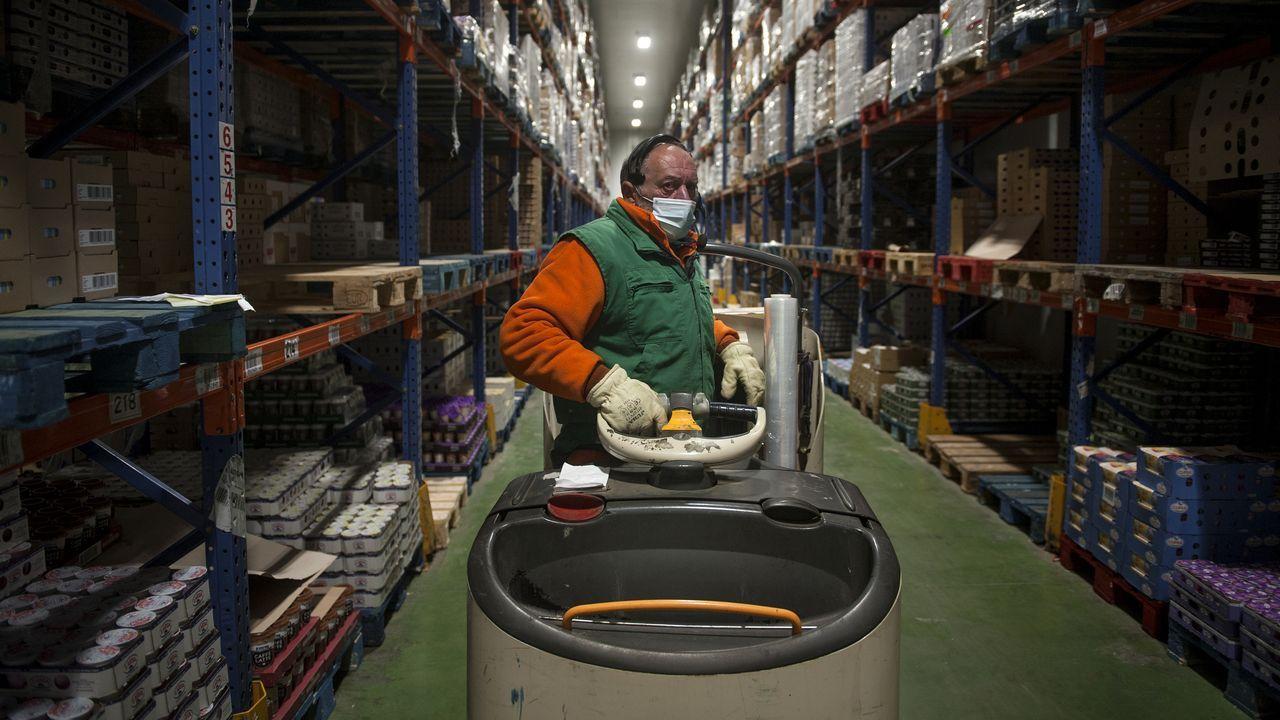 Gadisa, la logística al servicio del cliente
