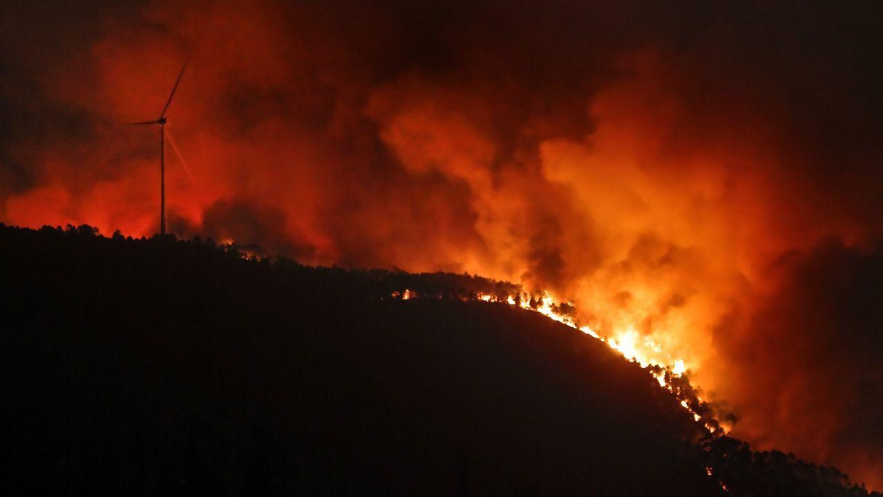 Cervantes recuperó la histórica feria de ganado.Incendio en Caldas de Reis durante octubre de 2017