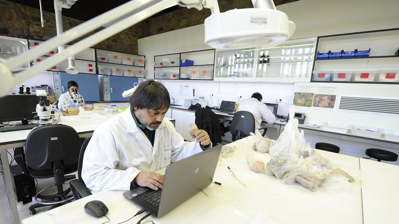Los bancos de alimentos reparten en Galicia millones de kilos