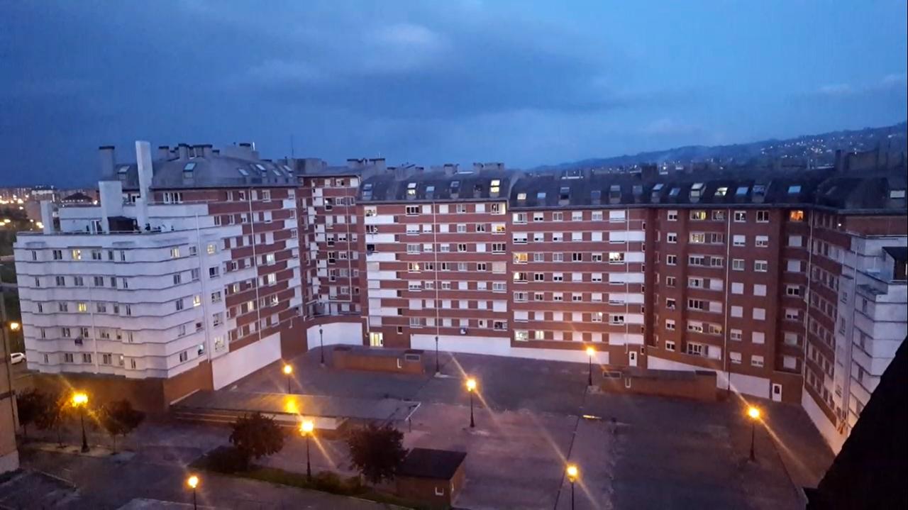 Osezna Éndriga apura últimos días semicautiva antes de volver a medio natural.Edificios en el barrio ovetense de Teatinos