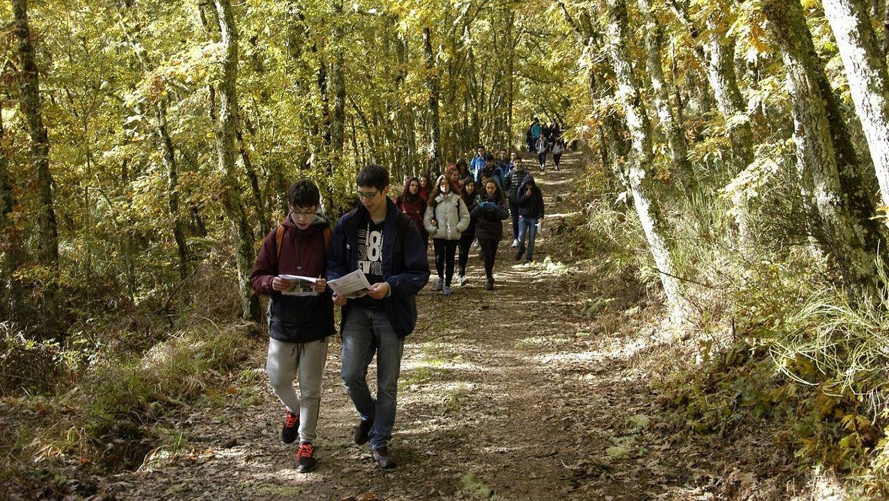 Entrega de premios Voz Natura.El jueves celebrarán en el CRA de Ponteceso una jornada de vendimia y esfolla