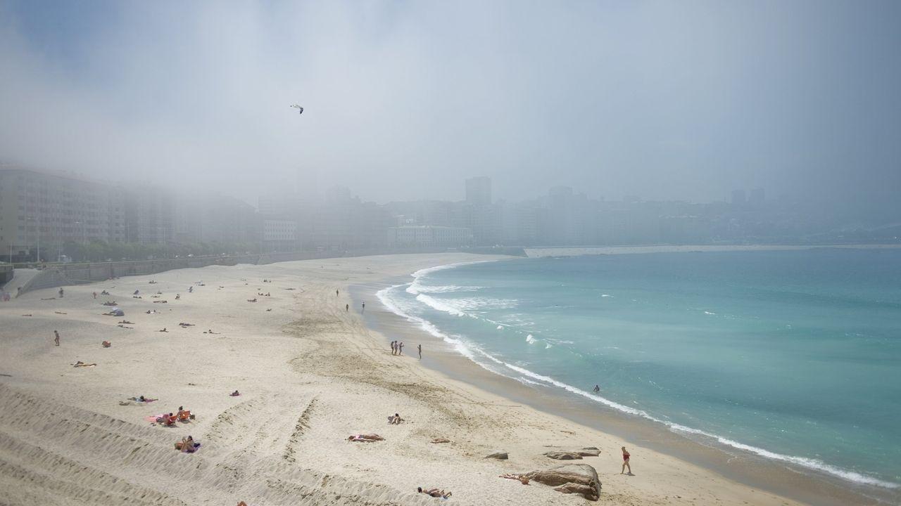 Aparece una quenlla en la playa de Quenxe, Corcubión.Dos socorristas se turnan estos días en la playa de Covas por el positivo de un tercer compañero