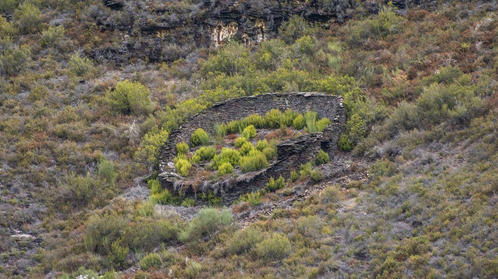 Una de las alvarizas situadas en los alrededores de Cortes