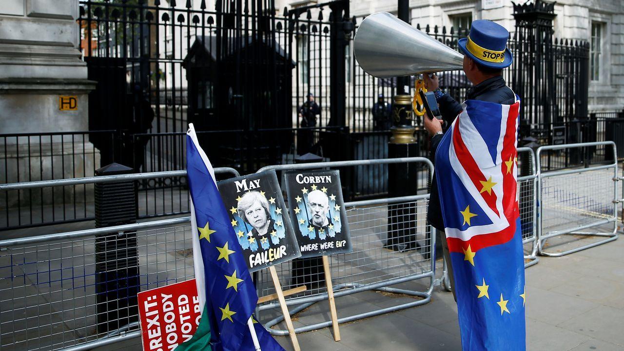 Un manifestante antibrexit, en la puerta de Downing Street