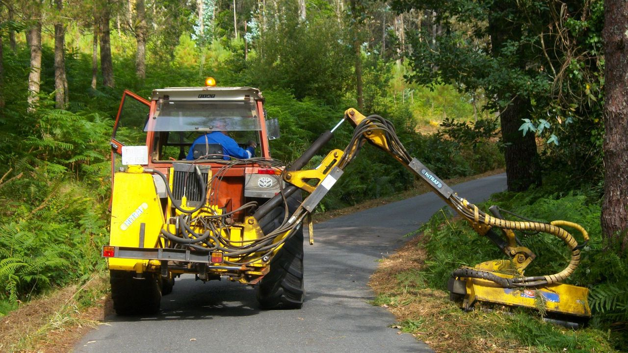Trabajos de desbroce en una carretera