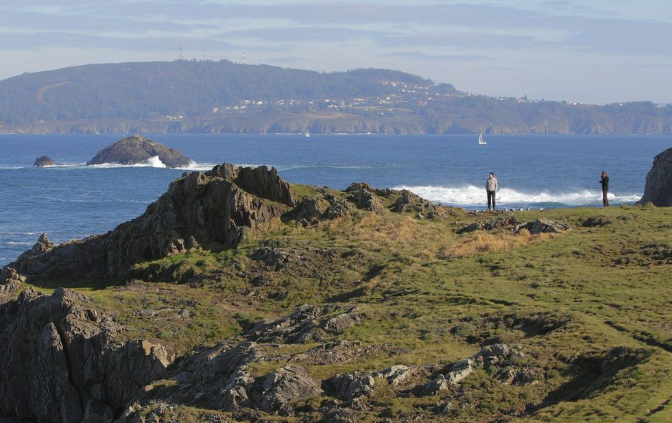 Los promotores de la iniciativa descartan plantar en el monte bajo junto al mar.