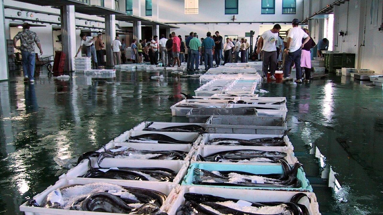 Los autores del texto de opinión que ilustra esta imagen reivindican los derechos de pesqueros españoles y de otros países que históricamente faenan en caladeros británicos, como este de Celeiro