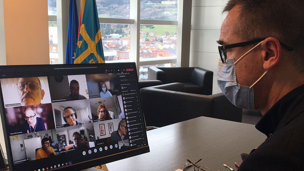 Pablo Fernández, consejero de Salud, durante la reunión telemática del Comité Asesor de Vacunaciones