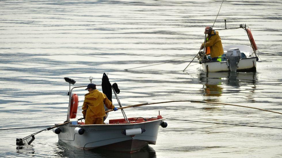 Todas las imágenes de Felipe VI en Ferrol.Mariscadores a flote en el banco de As Pías