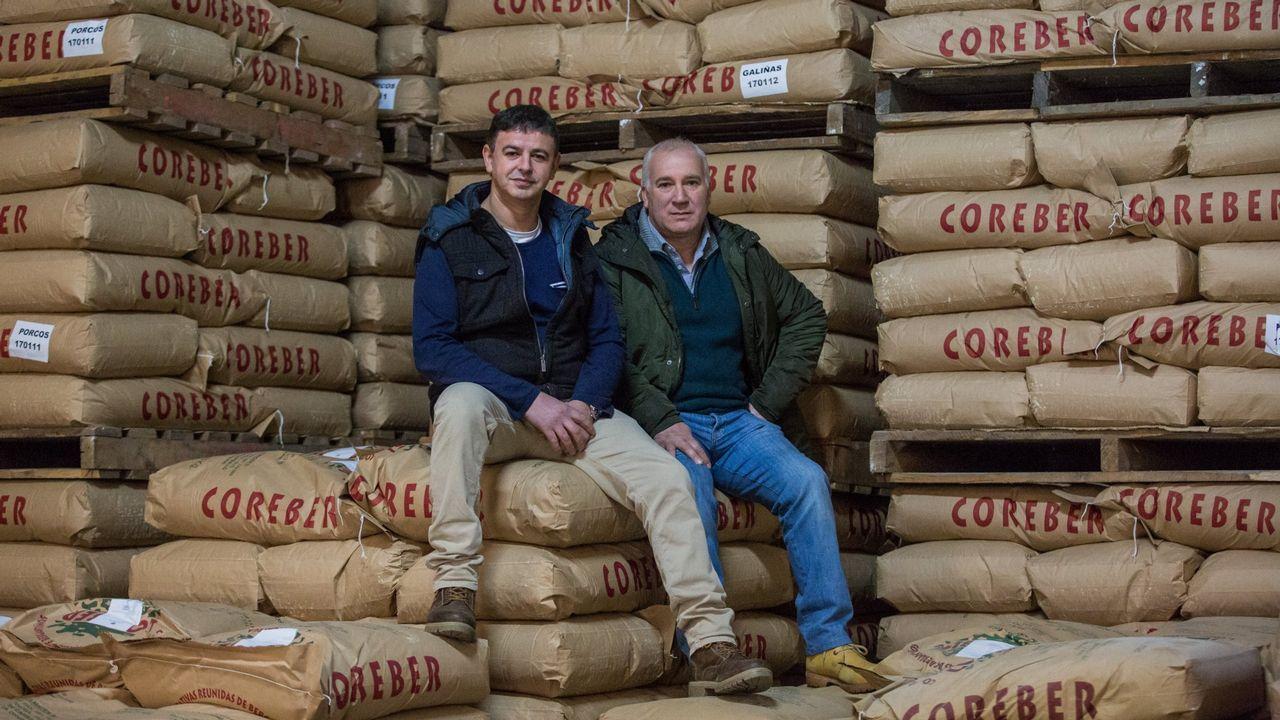 «As empresas están investindo en Galicia, ven futuro»