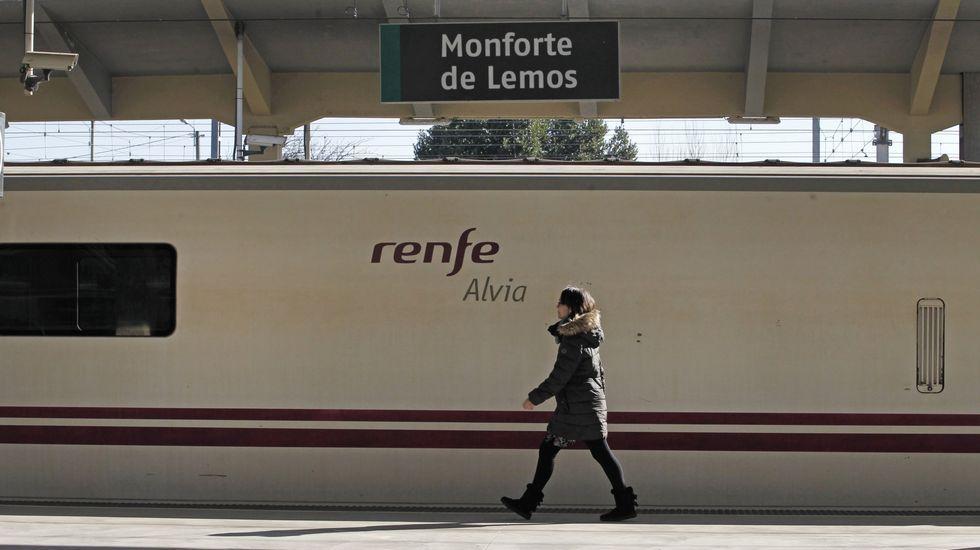 Llegada del tren Alvia con destino Madrid a Vilagarcía.Una pasajera pasa frente a un tren Alvia detenido en la estación de Monforte