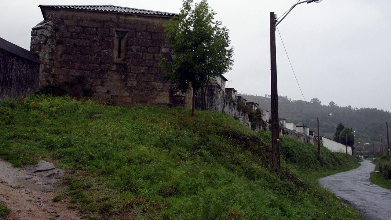 El sol llena de vida las terrazas de Ferrolterra.Los manzanos que aún estén en flor es mejor no tratarlos para evitar daños en los polinizadores