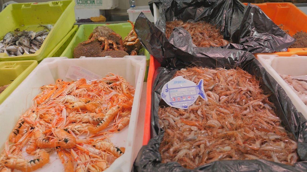 El mercado ya huele a Navidad: el kilo de percebes supera los 80 euros