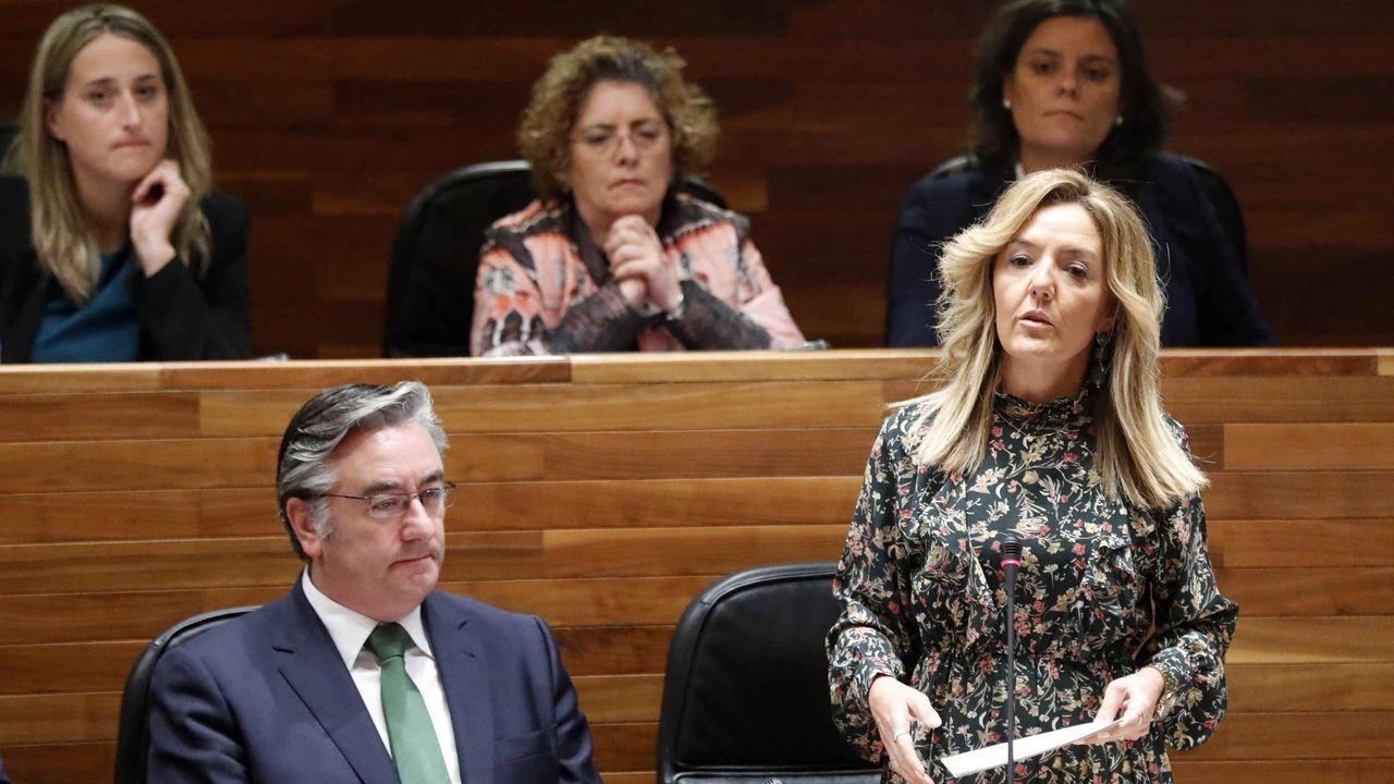 La portavoz del PP en la Junta General, Teresa Mallada, durante su intervención en el pleno de hoy de la Junta General del Principado