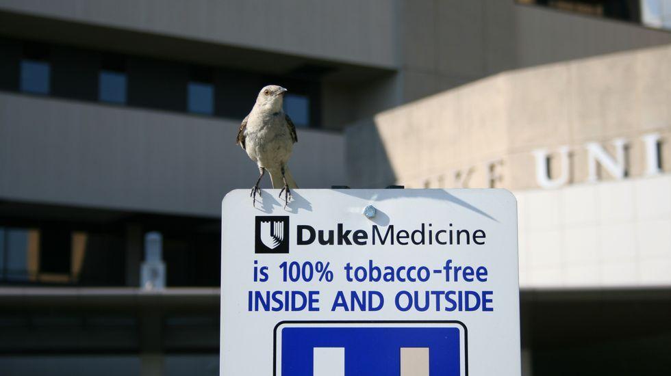 Los hospitales fueron de los primeros lugares que empezaron a declararse espacios libres del humo del tabaco