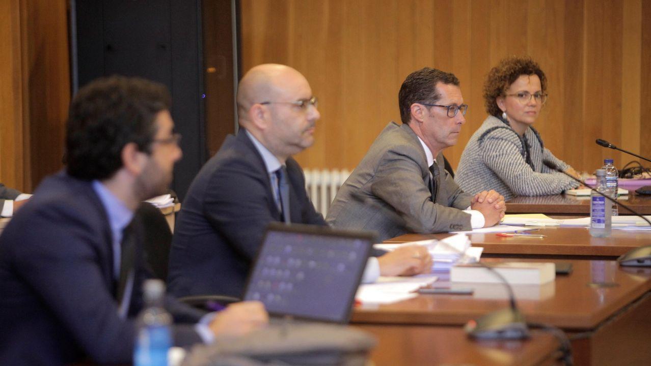 LOS DEMANDANTES. Los abogados del Estado, Javier Suárez y Adela Álvarez, al fondo, junto a los letrados de la Xunta y de la Diputación