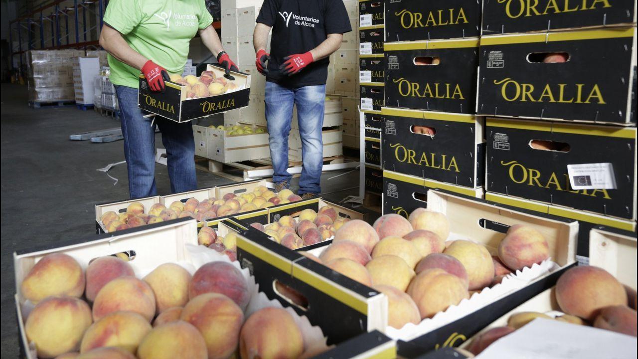 Reparto de fruta en el banco de alimentos Rías Altas en una foto de archivo