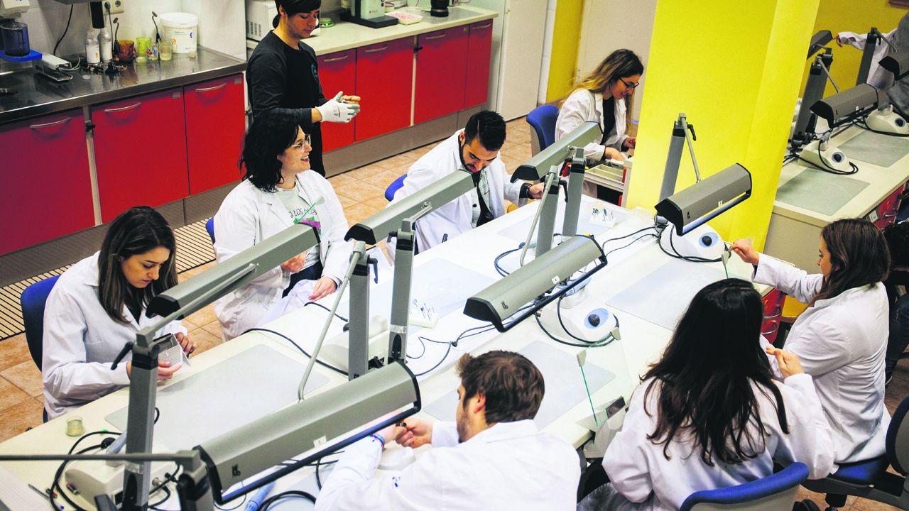 Alumnos del ciclo formativo de Grado Superior de audiología protesica