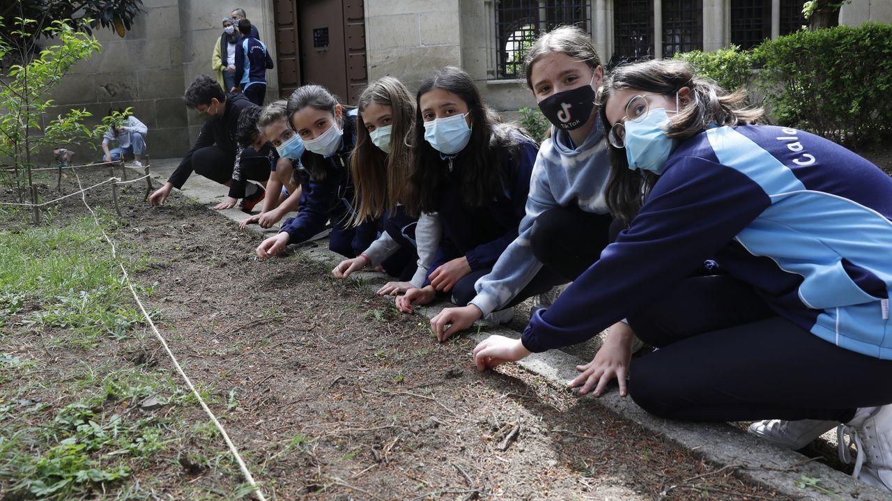 Alumnos del CEIP Marcón recorren O Salgueiral.Os escolares teñen unha pequena zona do patio sementada con leitugas, pementos, pirixel e xirasoles