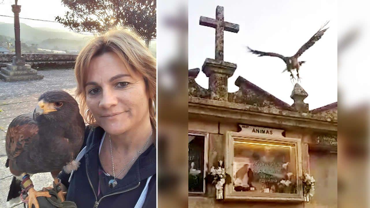 Este águila visita en el cementerio de Tui la tumba de su criador