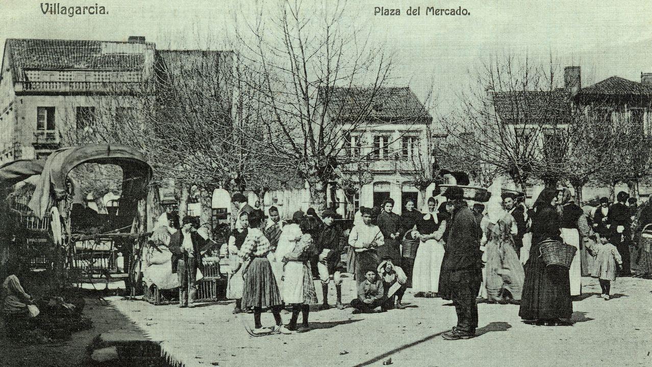 El Teucro vendimia en Pazo Baión .Jacobo, Álvaro y Juan, de izquierda a derecha, estudian 2º de ESO en la Compañía de María