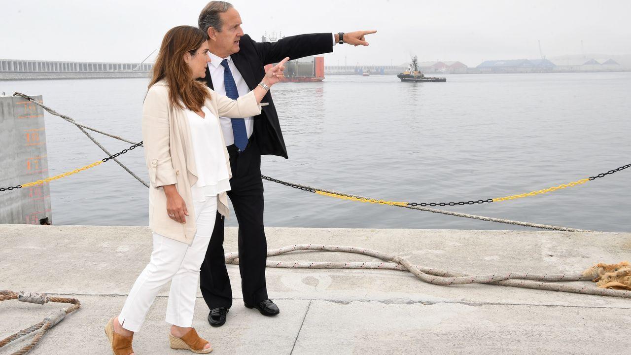 Pez espada incautado en el Puerto de A Coruña