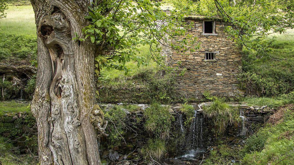 Antigua cabaña agrícola