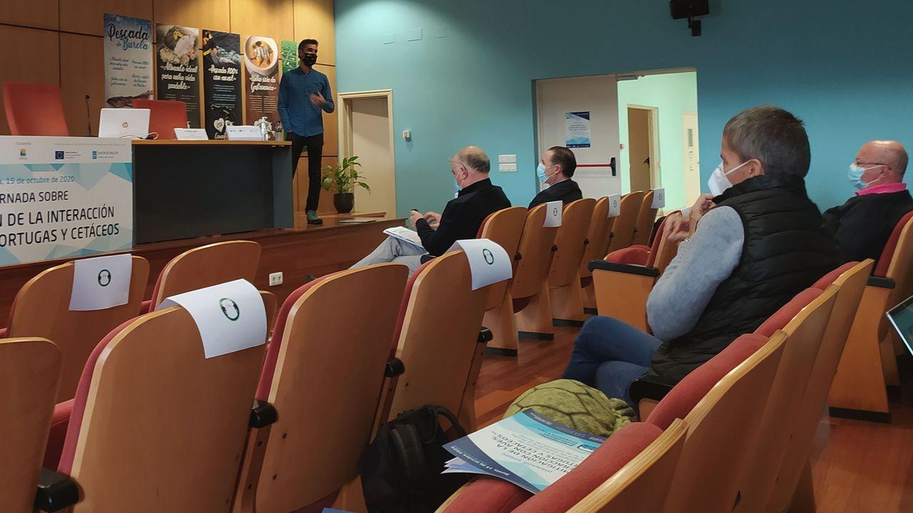 Un ponente con profesionales del arrastre de fondo, del palangre de superficie y del palangre de fondo, en el taller celebrado este jueves en Armadores de Burela y organizado por la OPP de Lugo.