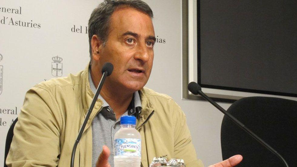 La diputada del PP en la Junta General, Carmen Pérez García.Fernando Lastra