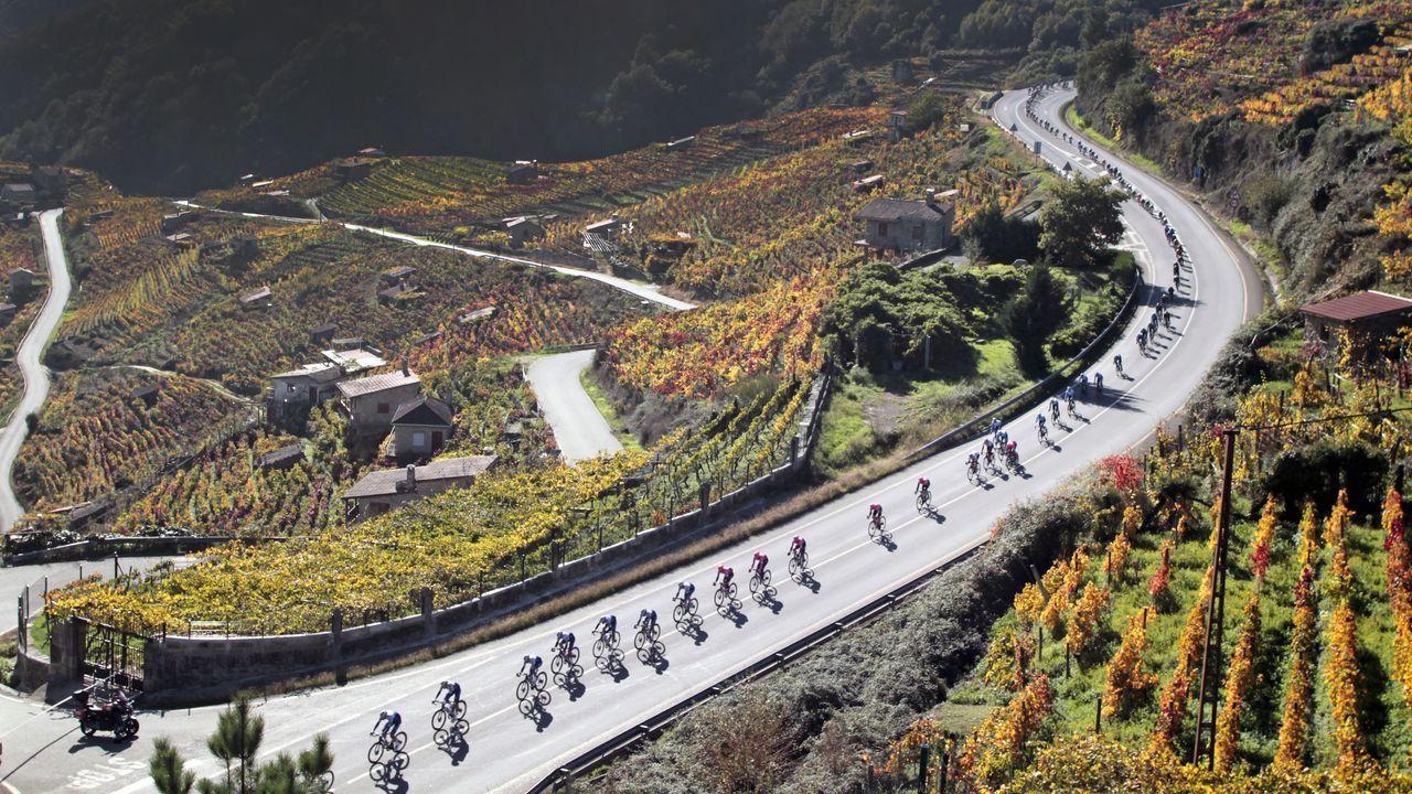 Las mejores imágenes de la etapa de La Vuelta entre Lugo y Ourense.Una multitud celebra la derrota de Trump cerca de la Casa Blanca