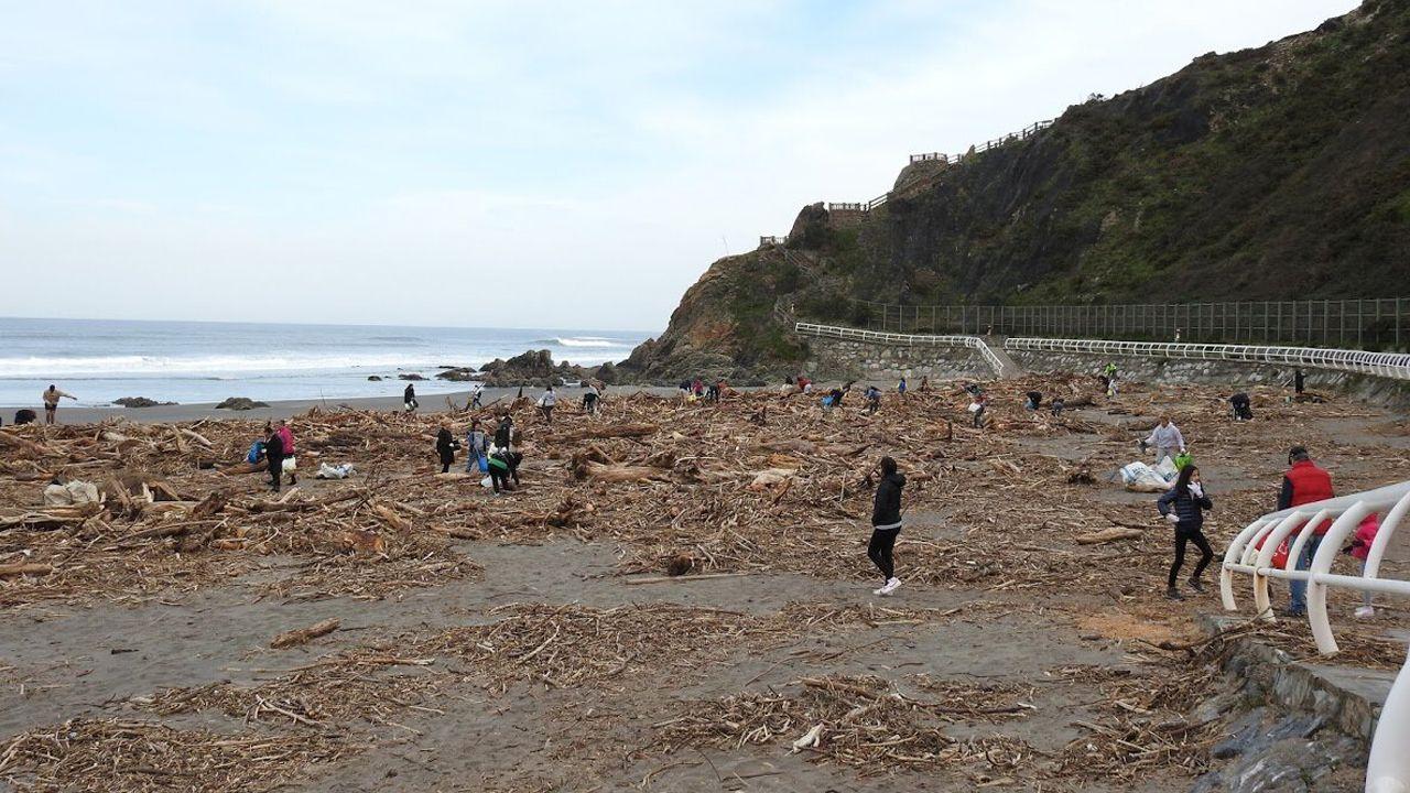Limpieza de playas.El río Piles, a su paso por Las Mestas