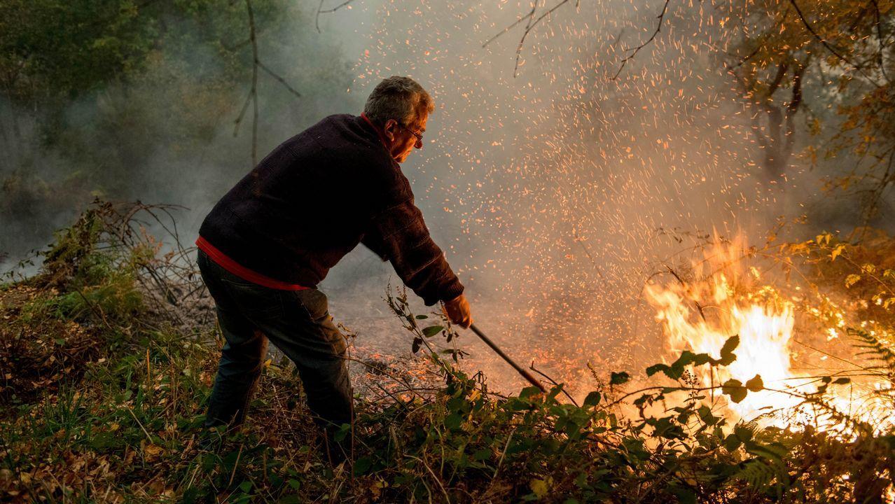 Incendio en el concello de Parada de Sil. Las llamas afectaron a diferentes puntos