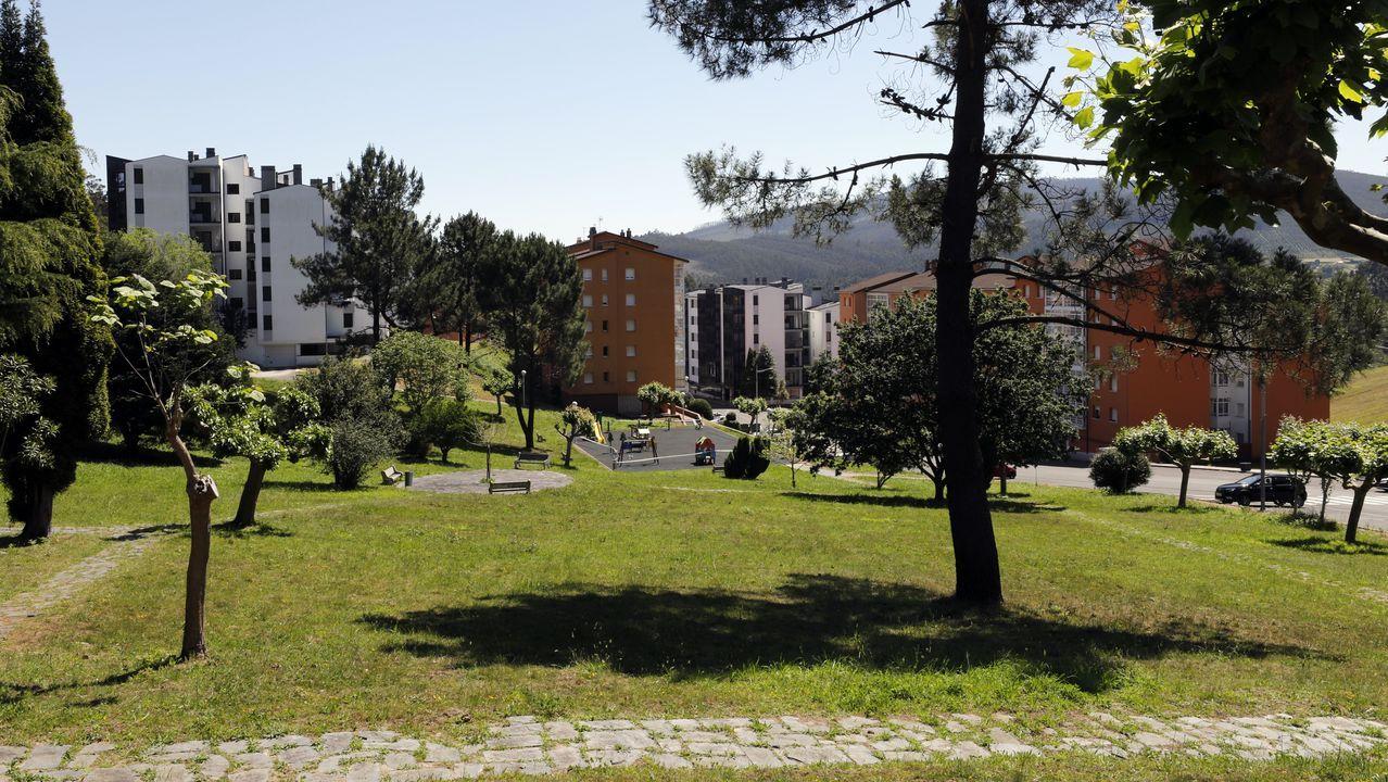 Todavia quedan viviendas en venta en la Urbanización Palmeiro