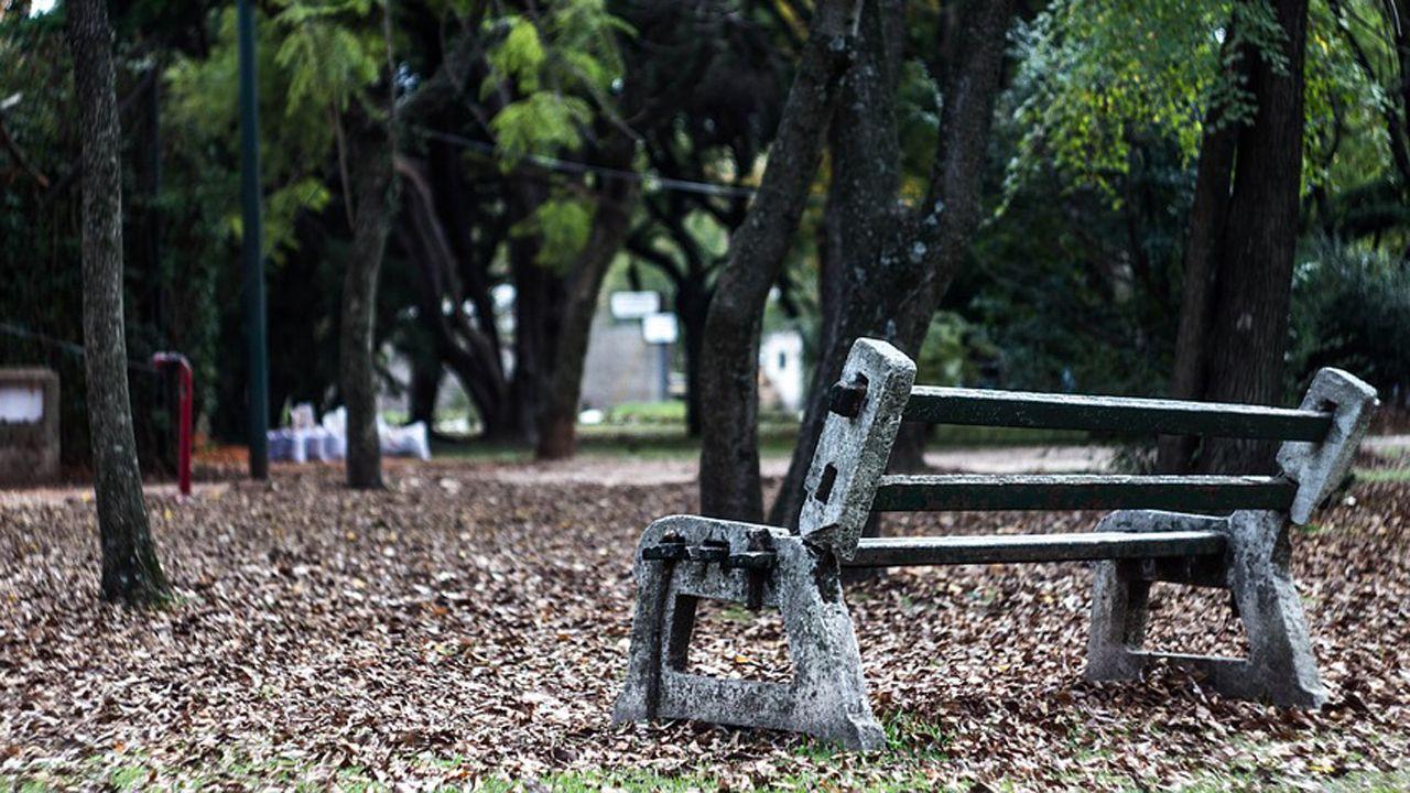 Banco parque soledad.Una anciana en Oviedo