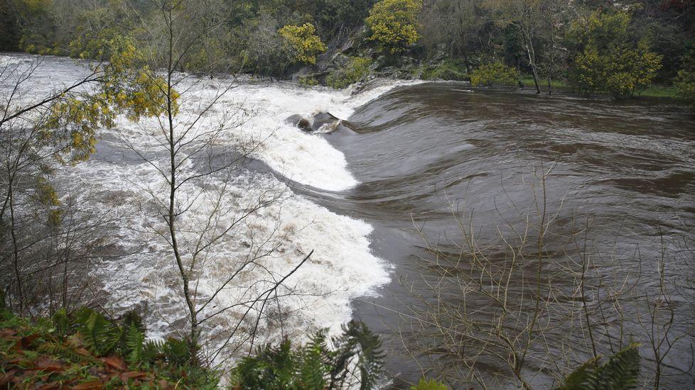 Río Lérez a pleno caudal