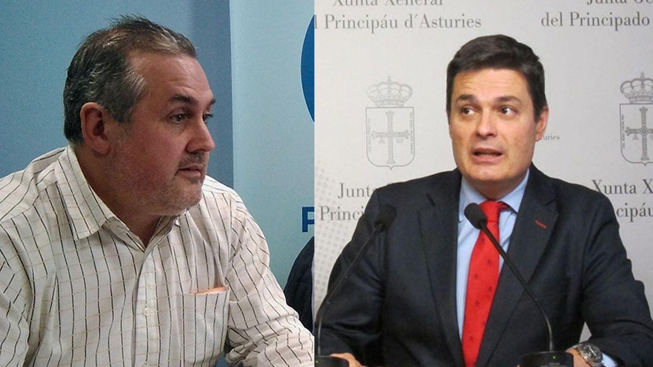 «Daré mi opinión en los plazos que marque el congreso del PP».Alfonso Araujo y Pedro de Rueda
