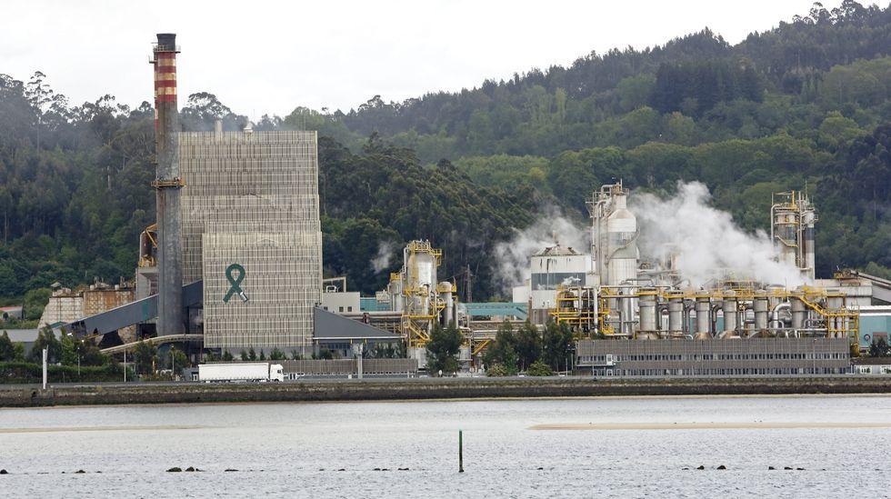 La Armada desvela sus secretos en Ferrol.Ence en Pontevedra