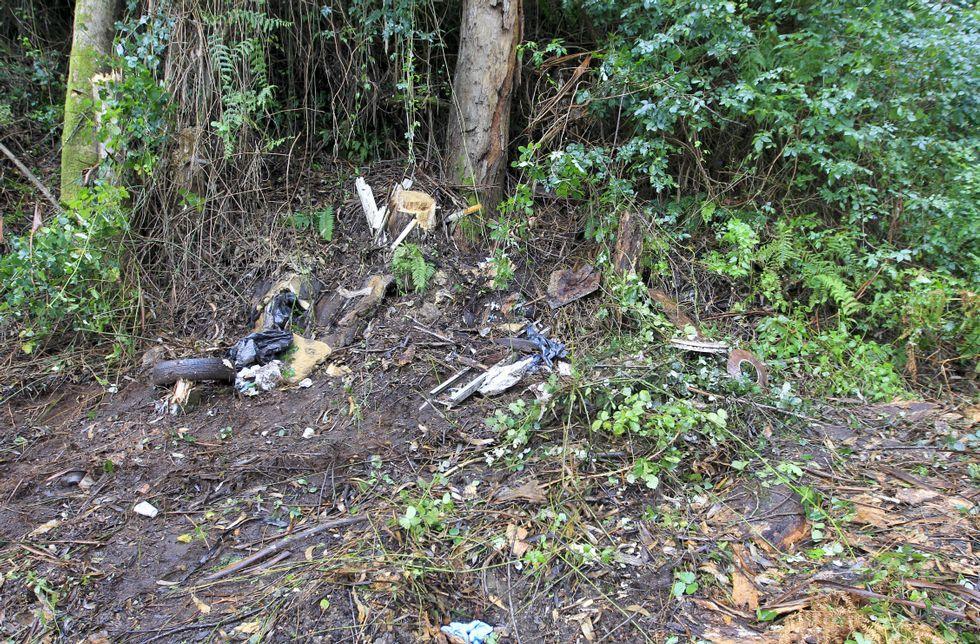 Lugar del monte en el que el miércoles aparecieron los restos óseos.