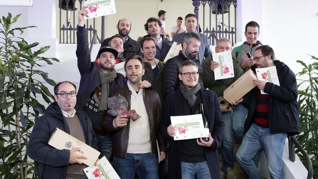 Entrega de los premios Magnum en Vilagarcía. Participantes en la primera ruta del llamado Oleobús, promovida por el consorcio turístico de la Ribeira Sacra y realizada el pasado fin de semana, varean aceitunas en un olivar del municipio de Quiroga