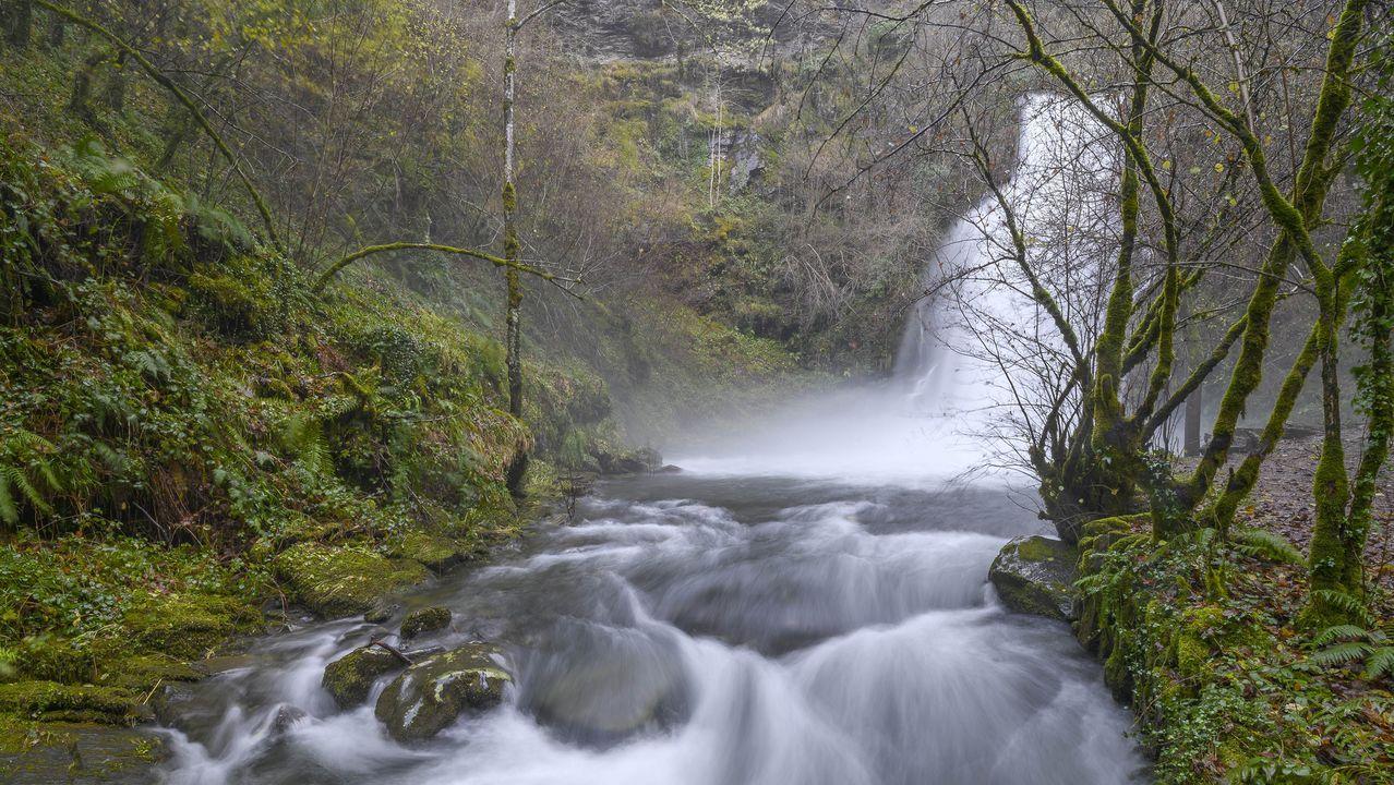 Otra vista de la pasarela, que permite acceder a la parte alta de la cascada