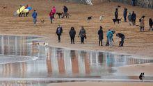 Un grupo de personas pasean con sus perros por la playa de San Lorenzo en Gijón