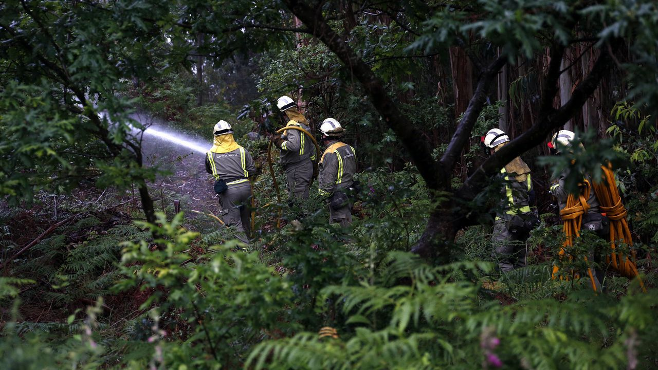 La lucha contra el fuego.El incendio de Llutxent fue uno de los más devastadores del año pasado